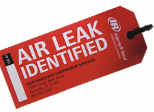services air-leak-assessment